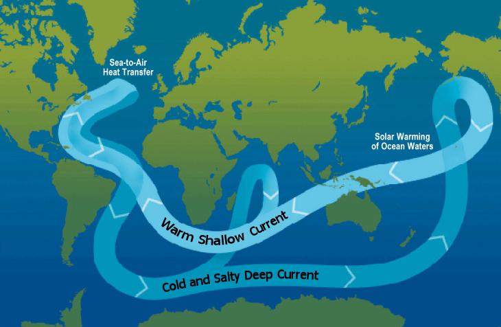 Corriente de la circulación termohalina mundial