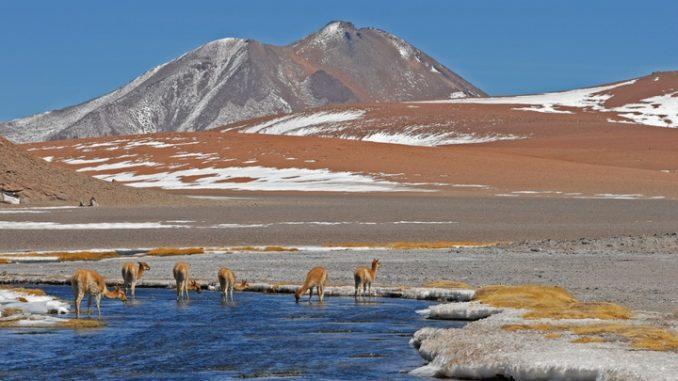 Los Andes, resultado de la subducción